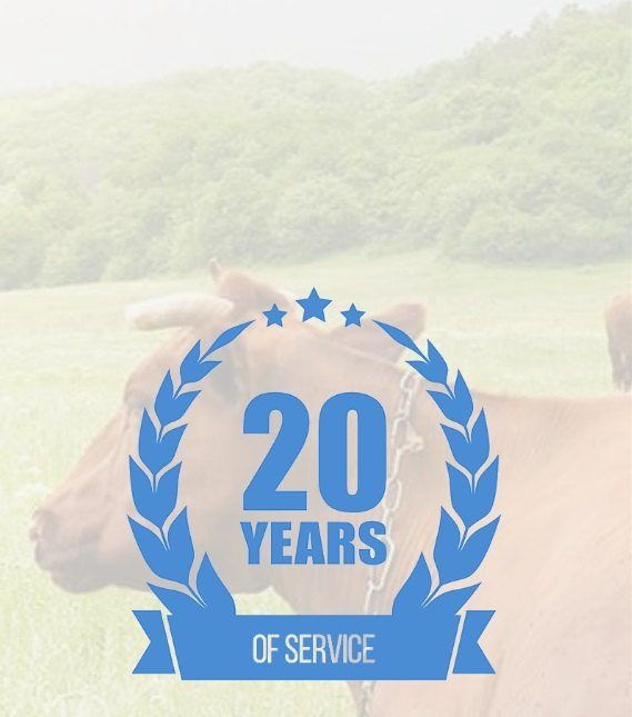 Creative COW 20 Years of service