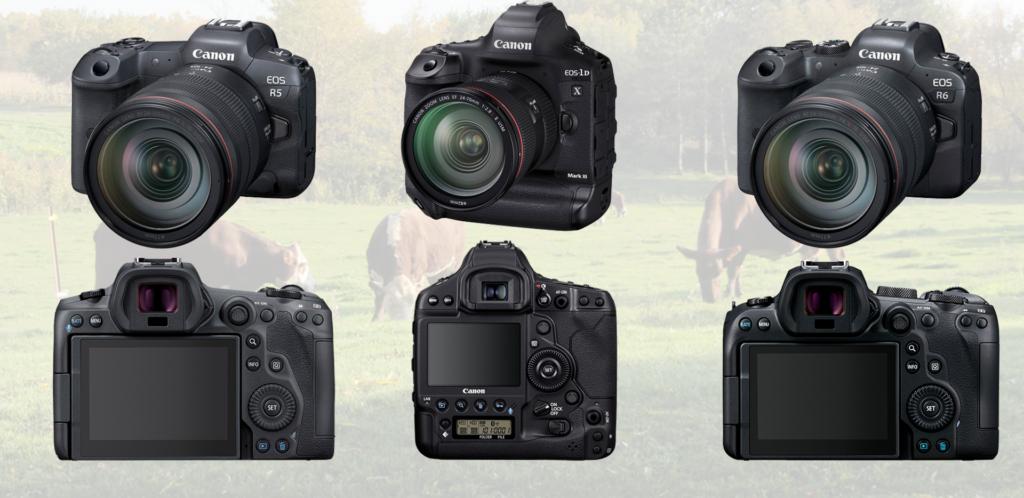 Canon EOS R5 EOS R6 and EOS-1D X