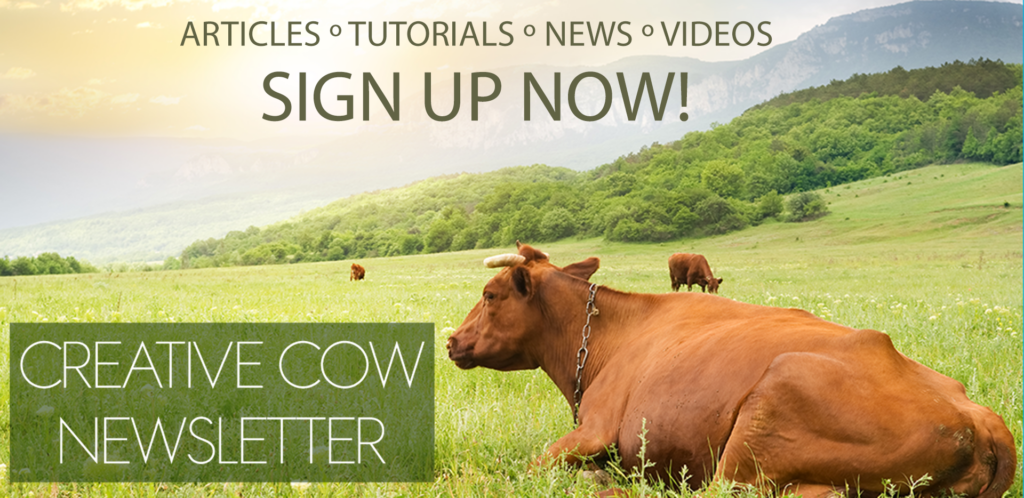 Sign Up Now for the Creative COW Newsletter
