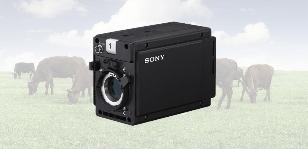 Sony DHC-P50 Camera