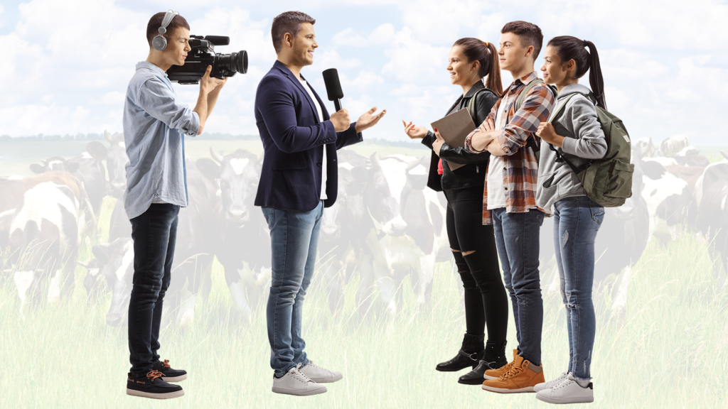 Film Broadcast Students Cows