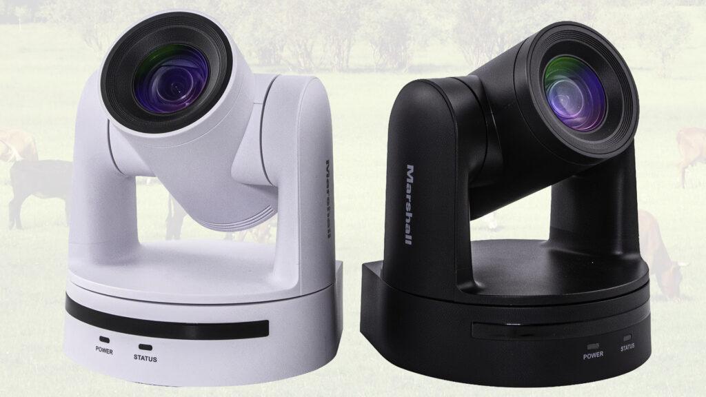 CV605 Marshall PTZ cameras