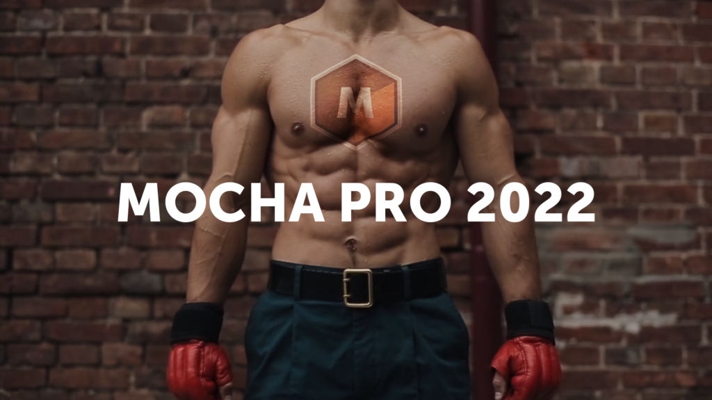 Boxer Logo Mocha Pro 2022